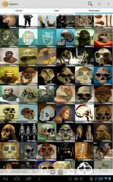Sapiens -Archaeology & History
