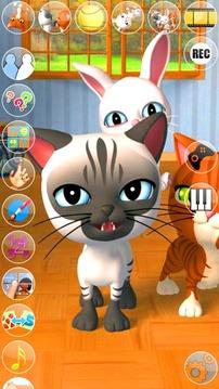 会说话的3只小猫 Talking 3 Friends Cats and Bunny