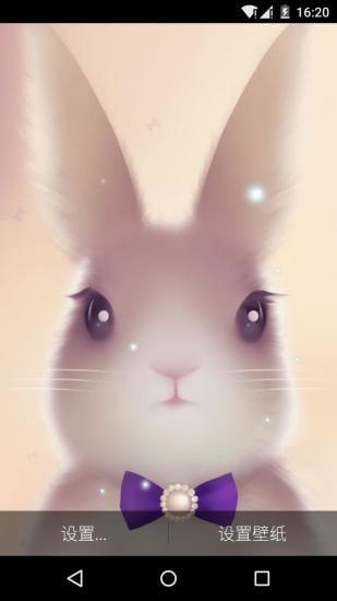 一只可爱的兔子静静地坐在屏幕中央,就那样呆呆地看着你,它的眼睛水晶