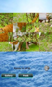 猫拼图 Cats Puzzle