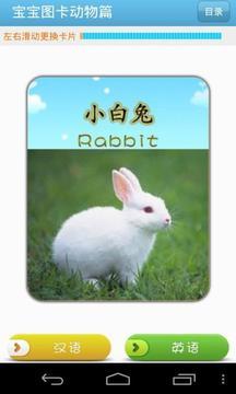 宝宝图卡动物篇