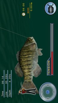 钓大鱼 Bass Fishing 3D