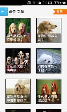 宠物医疗百科