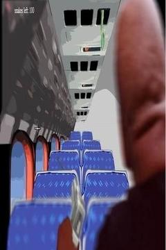 飞机上的蛇患