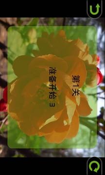 海棠花拼图免费版