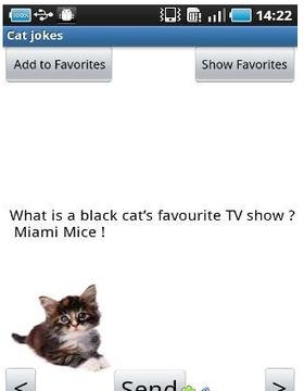猫猫问答笑话集