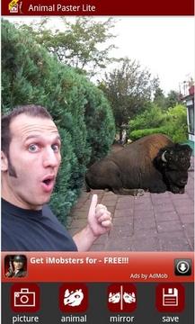 动物贴纸合成照片