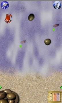 沙滩海蟹(Crabn Roll)