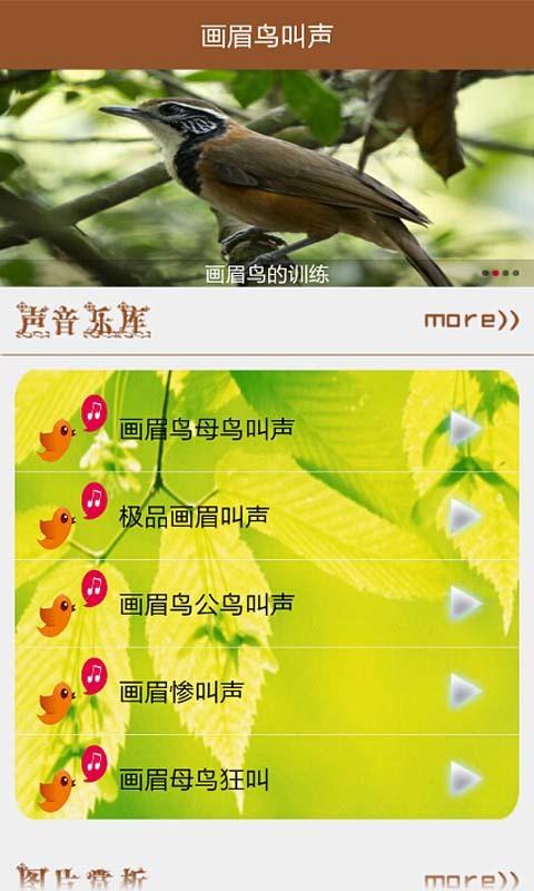 画眉鸟叫声截图(1)