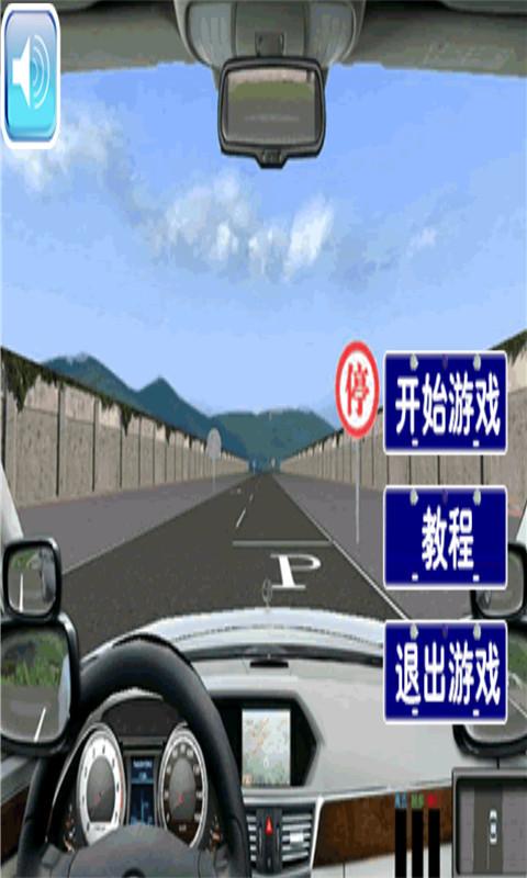 真实模拟驾驶截图(1)
