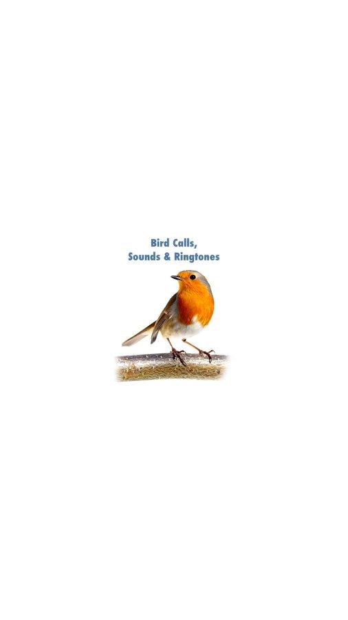 鸟的叫声截图(5)