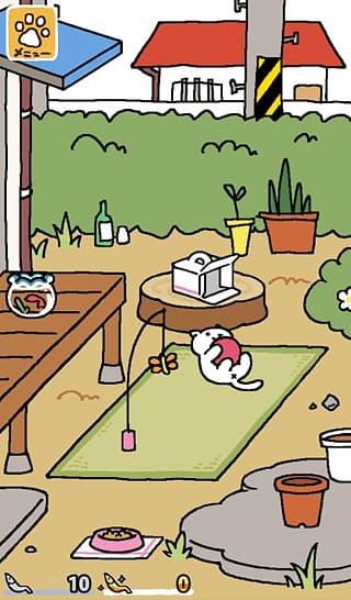 猫咪后院截图(4)