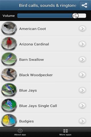 鸟的叫声截图(3)