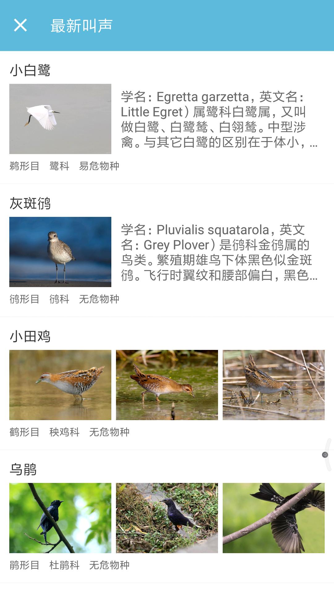 鸟叫声大全截图(3)