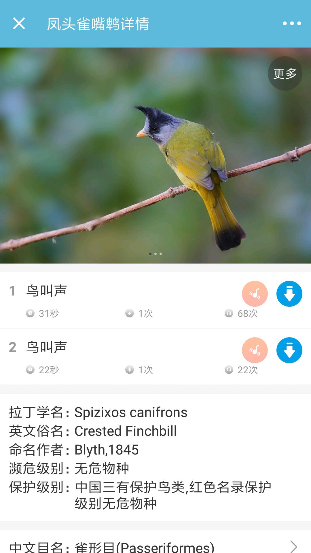 鸟叫声大全截图(2)