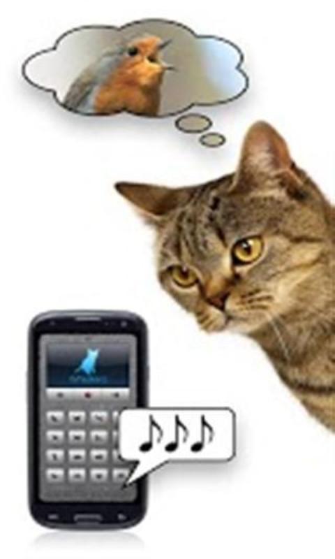 猫语翻译截图(2)