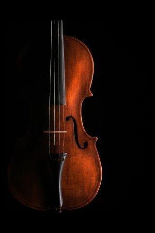 小提琴调音器截图(1)