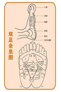 人体穴位图截图