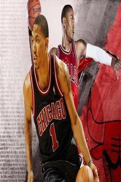 篮球拉力赛壁纸截图
