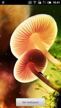 梦幻蘑菇动态壁纸截图