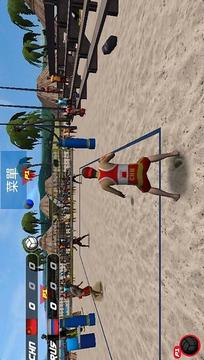 极限沙滩排球  Volleyball Extreme Edition截图