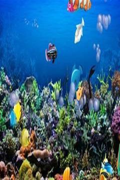 水族馆截图