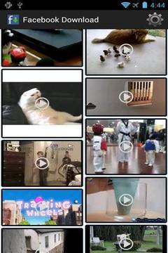 视频 下载器截图
