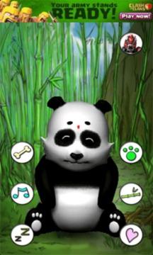 会说话的熊猫截图