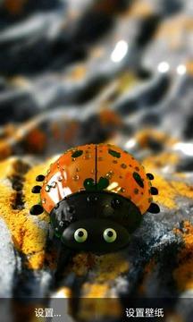 可爱趣味多彩小瓢虫截图