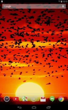 緋紅色的夕陽生活壁紙截图