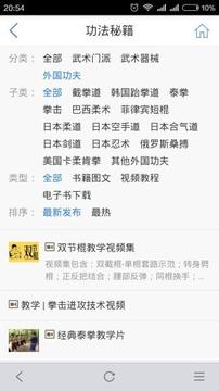 中华武术网截图