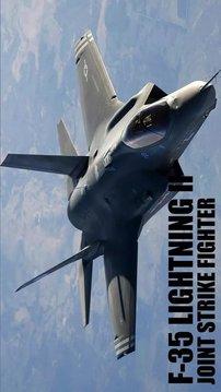 F-35 Lightning II Simula...截图