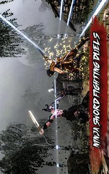 忍者刺客战斗3D截图