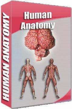 Human Anatomy Atlas截图