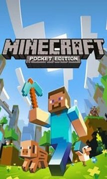Minecraft Pocket Edition Cheat截图