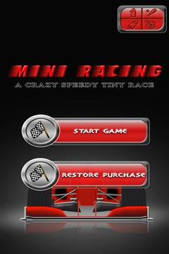 迷你赛车 Mini Racing : Crazy Tiny Race截图