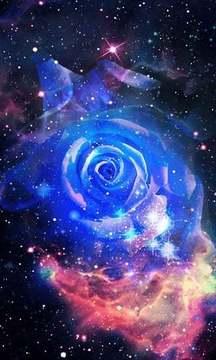 玫瑰炫彩星空动态壁纸截图