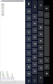 Flash Keys for Adobe Flash截图