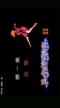忍者龙剑传2截图