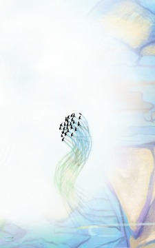 千山飞鸟(含数据包)截图