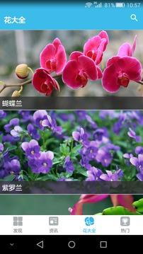 花儿朵朵截图