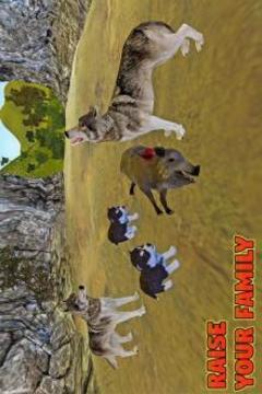 狼家庭模拟截图