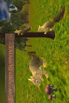 森林松鼠模拟器截图