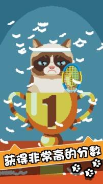 不爽猫史上最差游戏截图