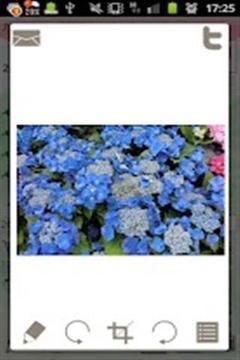 花园日记截图