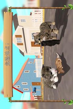 在线模拟猫截图