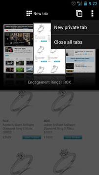 Opera 浏览器 beta截图