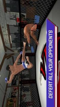 MMA Fighting 3D截图