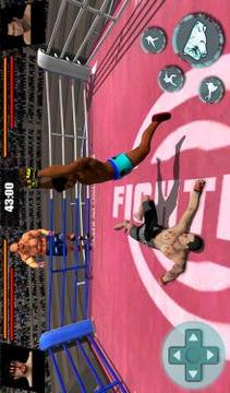 Ultimate Tag Team Fighting Championship截图