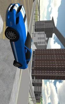 Race Car Driving 3D截图